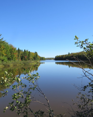 Irishtown nature park Dieppe, New Brunswick Canada