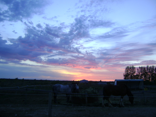 Prarie sunset at the barn Oakbank, Manitoba Canada