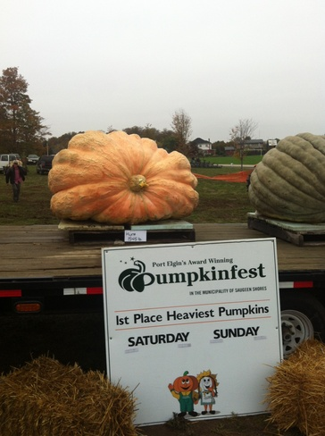 pumpkinfest Port Elgin, Ontario Canada