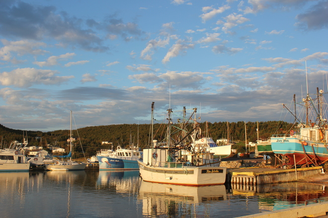 early morning Norman's Cove-Long Cove, Newfoundland and Labrador Canada