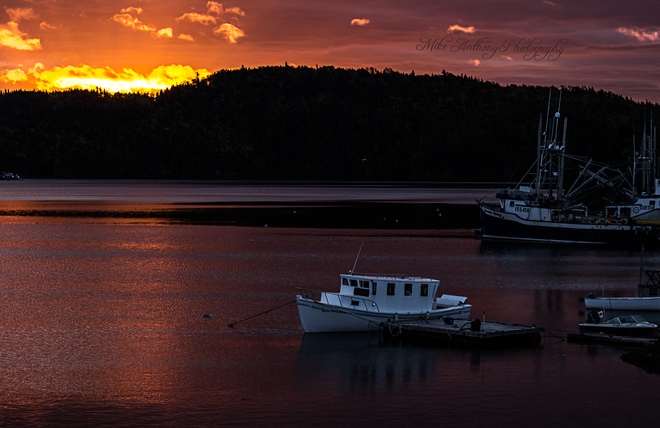 Sunrise over Robert's Arm Harbour Robert's Arm, Newfoundland and Labrador Canada