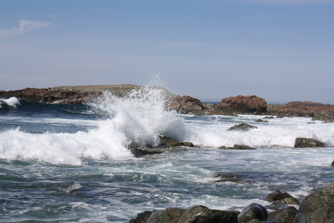 waves Bonavista, Newfoundland and Labrador Canada