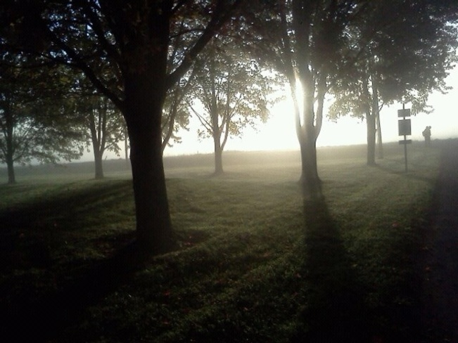 Foggy morning Stratford, Ontario Canada