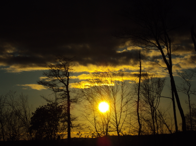 near last sunset of leaves... Elliot Lake, Ontario Canada