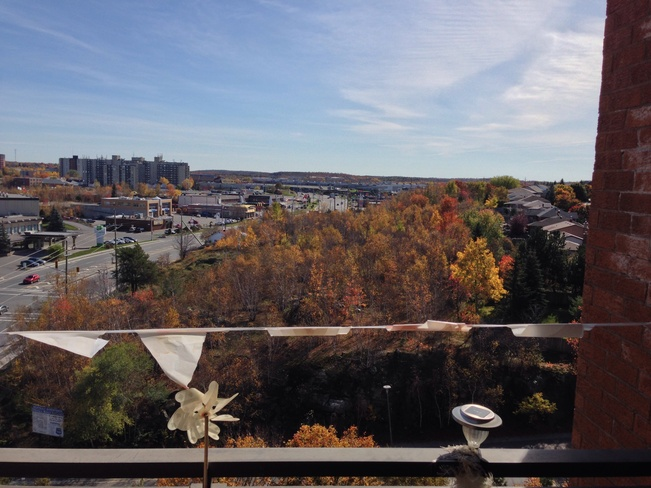 Beautiful Fall Day Sudbury, Ontario Canada