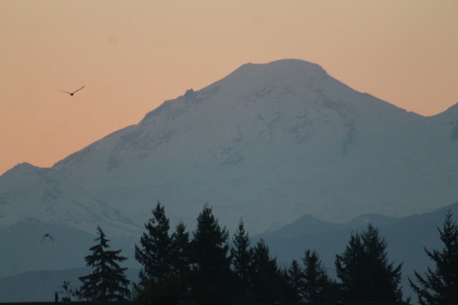 sunrise on mt baker Abbotsford, British Columbia Canada