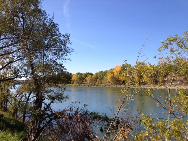 Fall beauty by the river....... Medicine Hat, Alberta Canada