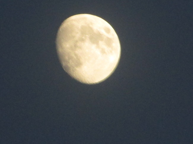 Tonight's moon 7:30pm Moncton, New Brunswick Canada