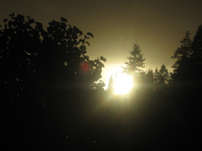 the sun going down Surrey, British Columbia Canada