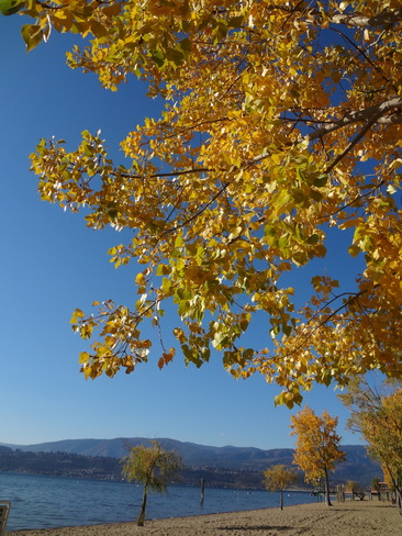 Autumn afternoon in Kelowna Kelowna, British Columbia Canada