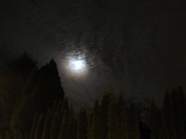 The moon and night sky. North Vancouver, British Columbia Canada