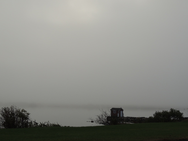 Foggy Morning Lewisporte, Newfoundland and Labrador Canada