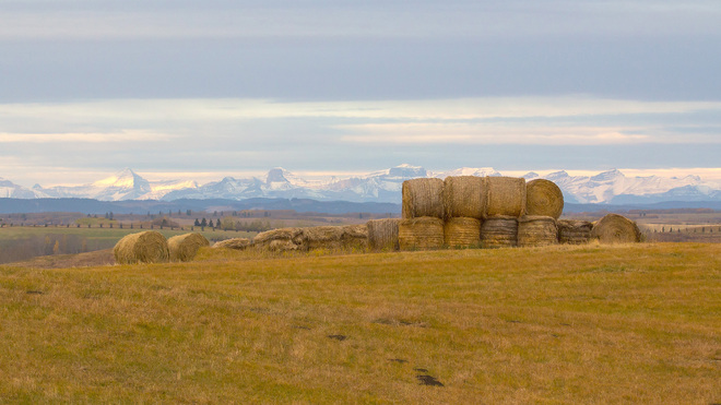 Hay and Mountains Cochrane, Alberta Canada