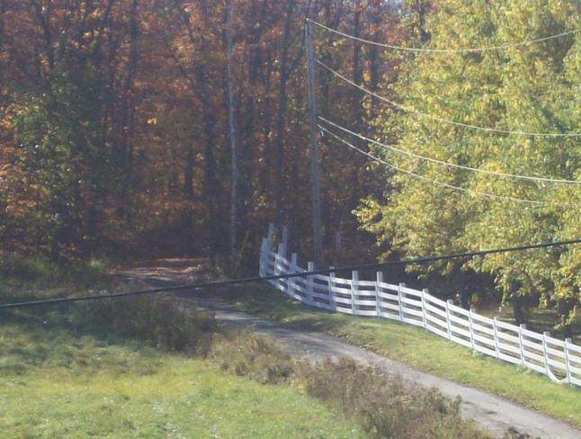 The Beauty of autumn on Hook & peg Rd. Orrville, Ontario Canada