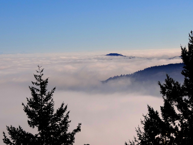 Above and beyond the fog Malahat, British Columbia Canada
