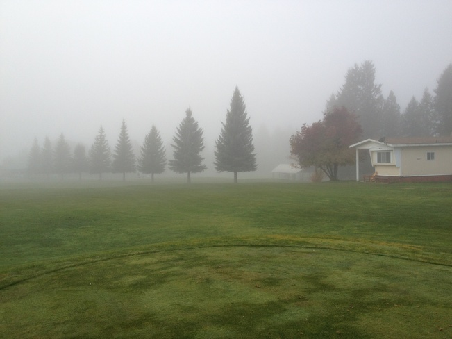 A foggy day on the golf course Edgewater, British Columbia Canada