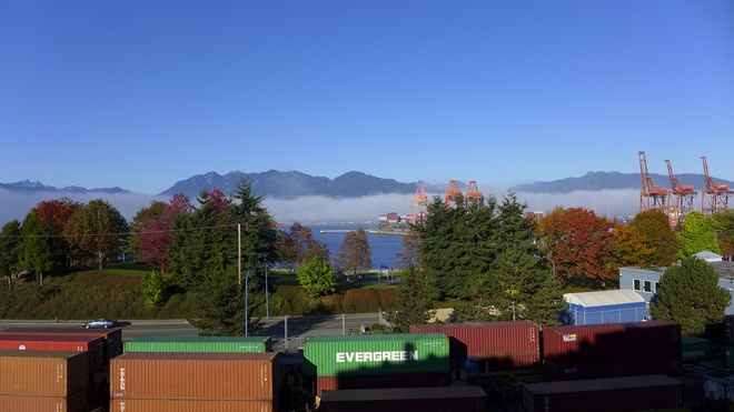 Fall Colours & Fog Vancouver, British Columbia Canada