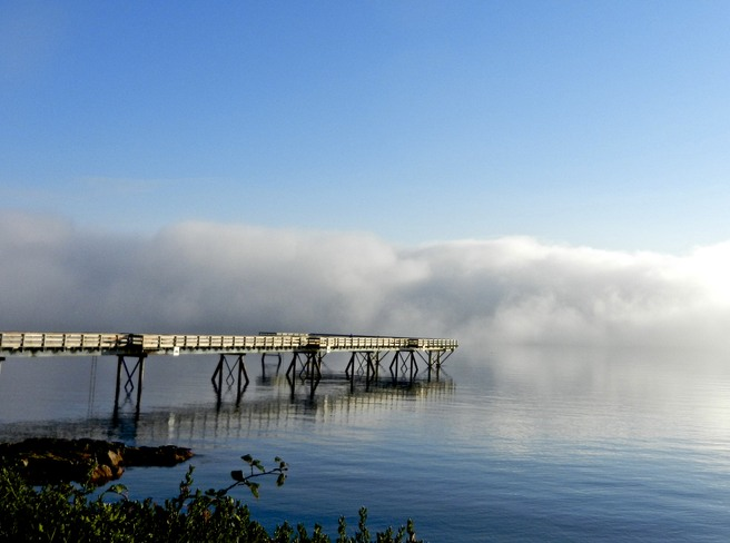 Fog bank Sidney, British Columbia Canada