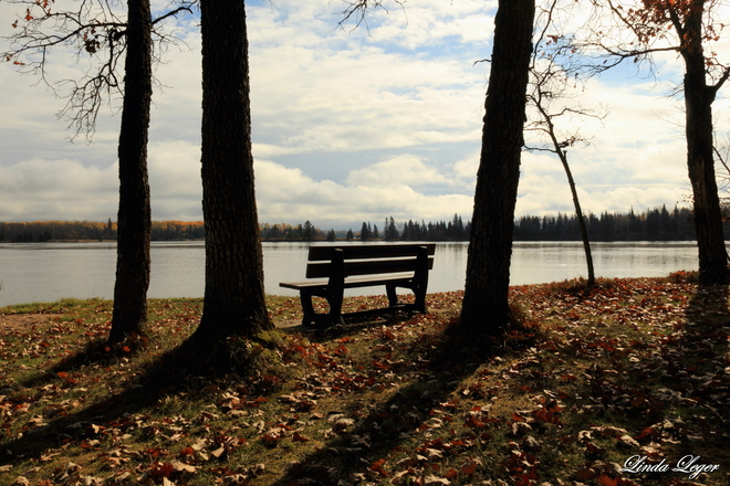 Seat With A View Pinawa, Manitoba Canada