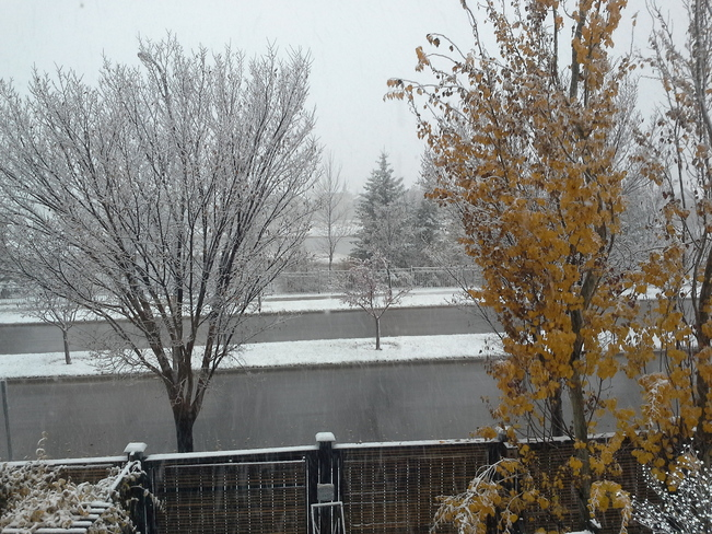 First Snow Chestermere, Alberta Canada