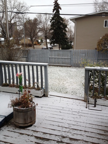 First Snow of the Season Edmonton, Alberta Canada