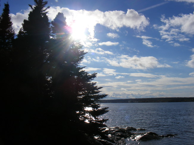 Sunny Afternoon Birchy Bay, Newfoundland and Labrador Canada