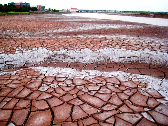 Mud of the Petticodiac River Moncton, New Brunswick Canada