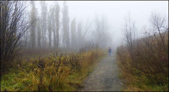 Morning walk in the fog, Elliot Lake. Elliot Lake, Ontario Canada