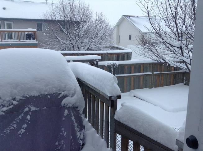 Snow! Red Deer, Alberta Canada