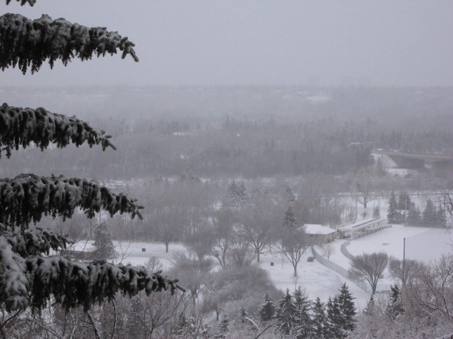 First Real Snowfall in Edmonton Edmonton, Alberta Canada