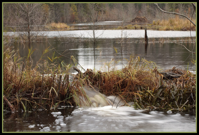 Again....lots of water moving through the area. Magnetawan, Ontario Canada