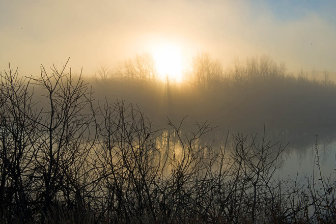 Foggy Sunrise Lethbridge, Alberta Canada