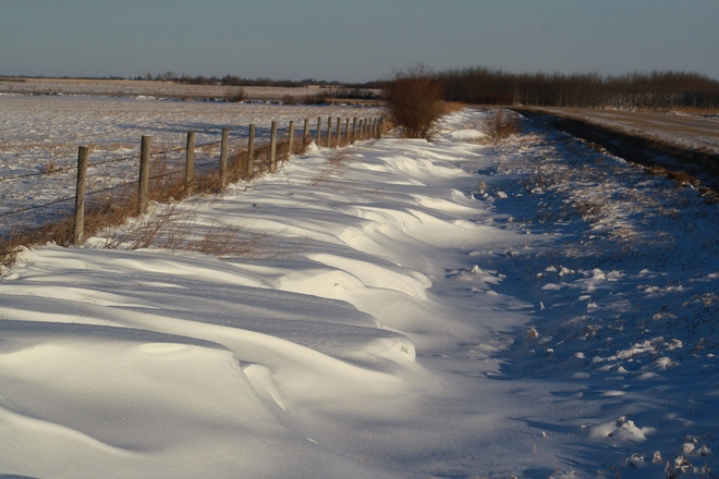 Crisp and cold after the storm Tofield, Alberta Canada