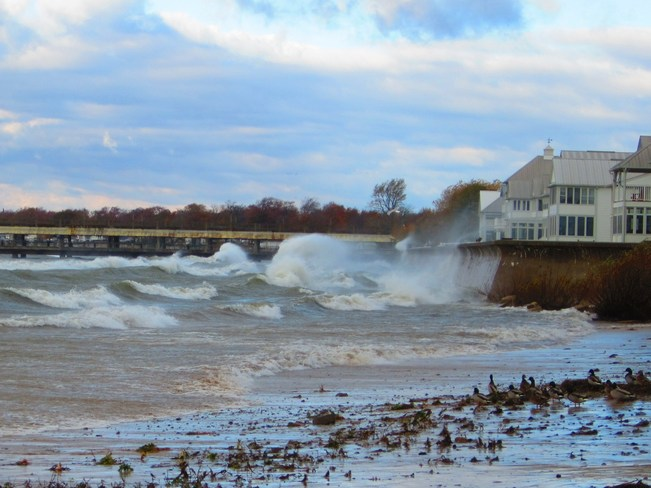 Big Wind Bigger Waves! Crystal Beach, Ontario Canada