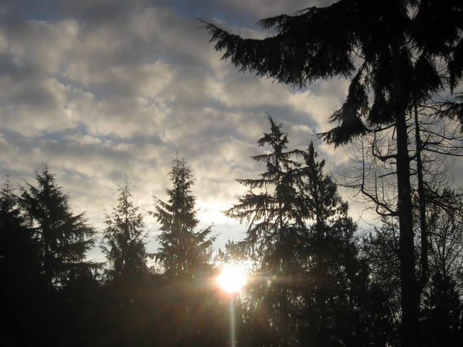sunrise on a frosty day... Surrey, British Columbia Canada