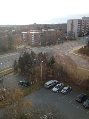 no snow here Halifax, Nova Scotia Canada