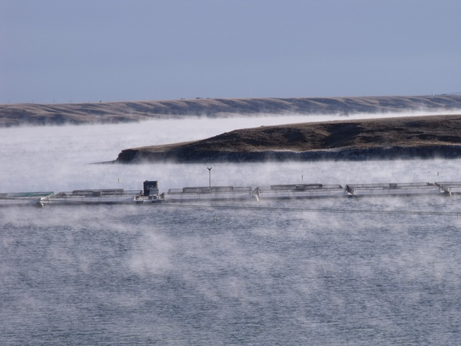 Cold air + Warm water= Steam Lucky Lake, Saskatchewan Canada