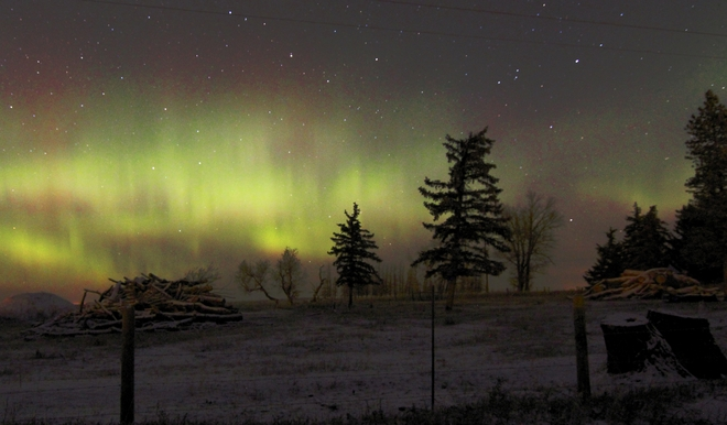 northern lights Brooks, Alberta Canada