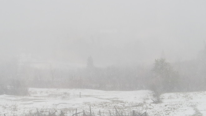near white out conditions Rutherglen, Ontario Canada