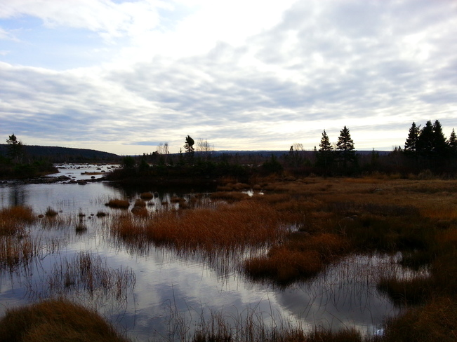 Nov 12 Gambo, Newfoundland and Labrador Canada