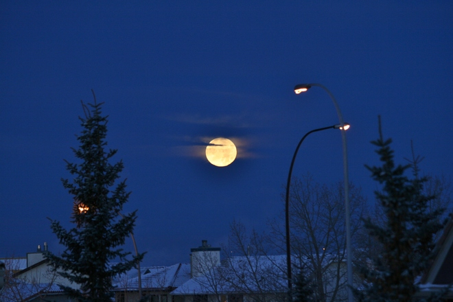 Moonset at sunrise Calgary, Alberta Canada