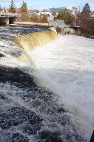 Check out the Falls Fenelon Falls, Ontario Canada