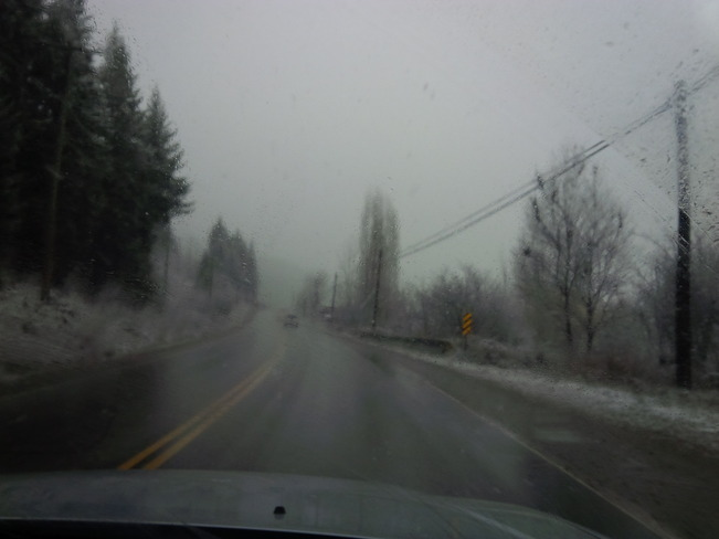 Snow and fog Enderby, British Columbia Canada