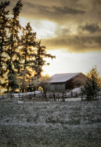Evening light on the horse barn. Enderby, British Columbia Canada