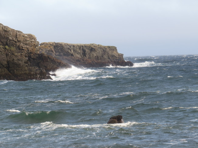 South East wind . Rock Harbour, Newfoundland and Labrador Canada