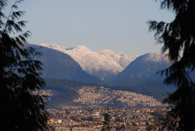 This is what cold looks like Surrey, British Columbia Canada