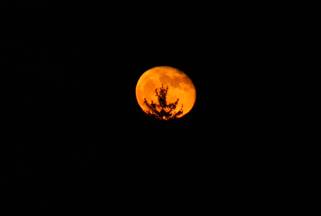 Bad Moon on the Rise Ingersoll, Ontario Canada