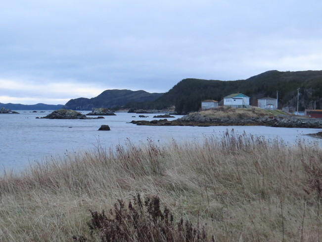 out the bay Rock Harbour, Newfoundland and Labrador Canada