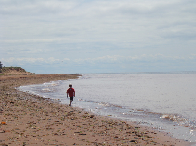 walk on beach O'Leary, Prince Edward Island Canada