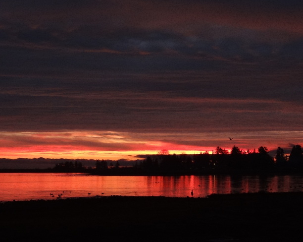 Day breaks in marvelous colours Royston, British Columbia Canada